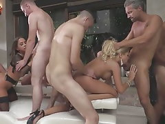 Webcam, Anal, Group Sex, Orgy, Big Cock